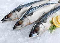 Mackerel contains Omega-3s